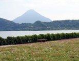 池田湖(いけだこ)