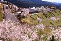 霧島神話の里公園.jpg