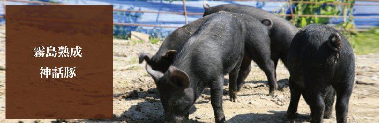霧島熟成神話豚
