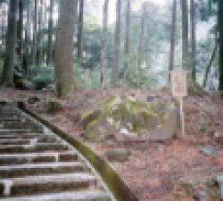 霧島の『七不思議』 3「亀石」の不思議
