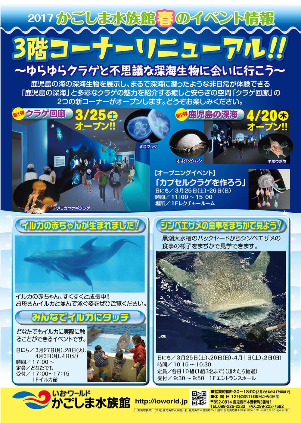 かごしま水族館春のイベント情報
